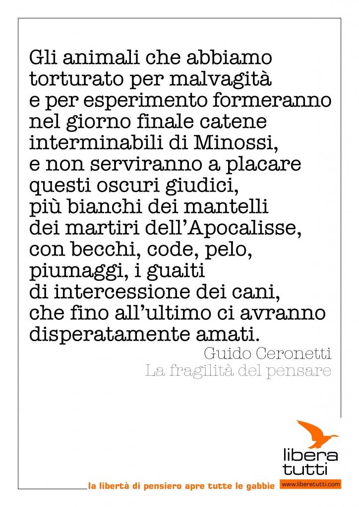 una frase di Guido Ceronetti