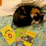 Foto della gatta Matilda che sonnecchia fra alcune delle produzioni della Troglodita Tribe